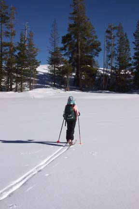 Image of skier crossing Flora Lake on way to low rise overlooking Donner Lake.