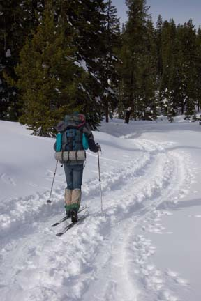 Image of skier heading to Castle Pass