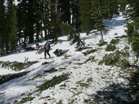 Image of avalanche debris