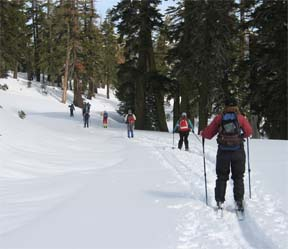 Image of skiers on road leading to quarry.